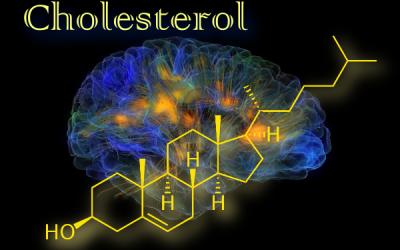 Cholesterol vpsychológii a epidemiológii